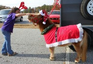 Tatertot in the Fork Shoals Parade